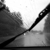 дождь... дождь... дождь... :: Валерия  Полещикова