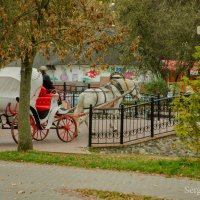 Месяц осени бродит по парку... :: Сергей и Ирина Хомич