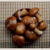 грибочки из лесочка... :: Юлия