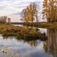 Река и осень :: Любовь Потеряхина