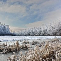 Вот  и  зима. :: Валера39 Василевский.