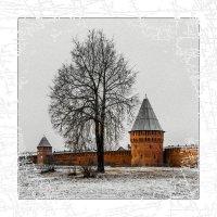 СМОЛЕНСК... первый день зимы... :: Алексей Лебедев