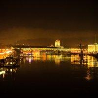 Вечерний вид с Крымского моста :: Людмила Финкель