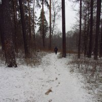 IMG_6467 - Не хоженная (последние полчаса) тропа :: Андрей Лукьянов