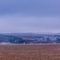 В ожидании снега :: Игорь Николаев