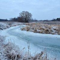 Замёрзший ручеёк. :: Виктор Евстратов