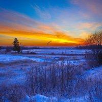 Зимний рассвет :: Виталий Житков