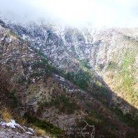 Снег в горах :: Сергей Тарапата