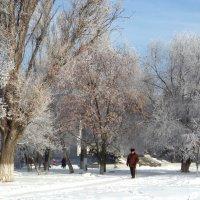 Зима в городе... :: Сергей Петров
