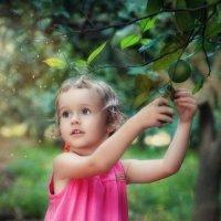 В мандариновой роще :: Anna Lipatova