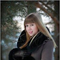 Зимний фотосет :: Сергей Величко