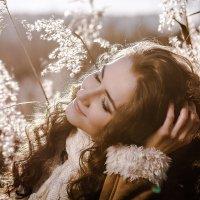 Осенний свет :: Елена Оберник