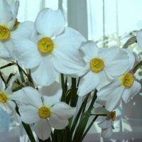 И будет весна.. :: zoja