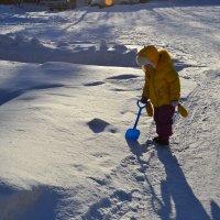 снег :: Елена Шмойлова