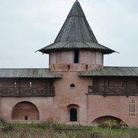 Башни  Спасо-Евфимиева  монастыря... :: Galina Leskova