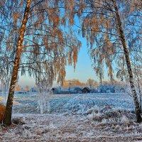 Замерзла  деревушка. :: Валера39 Василевский.