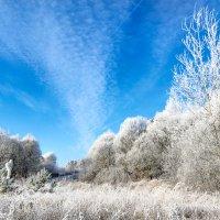 Под небом светло голубым Сверкал хрустальный лес... :: Анатолий Клепешнёв