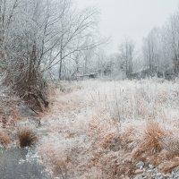 Зимняя сказка :: Mary Akimova