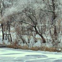 Первый лед, первый снег :: Людмила Селегенева