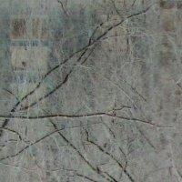 Окно/2 :: Дан Энта