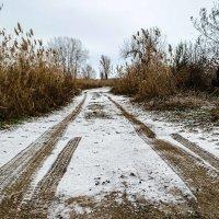 Первый снег :: Константин Бобинский