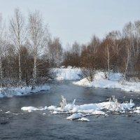 Зима на Алтае :: Сергей Лошкарёв