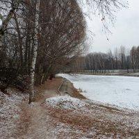 Зимний пруд. :: Oleg4618 Шутченко