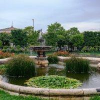 В парке Вены... :: Илья Подоляко