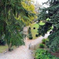 Взгляд в парк :: Ольга