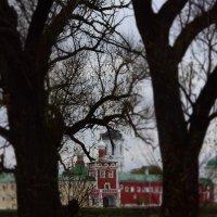 Ворота монастыря. :: Евгения Бакулина
