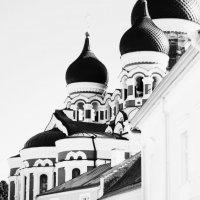 На улицах Таллина. :: Екатерина Анзылова