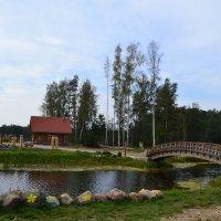 Пруд с мостиком. :: zoja