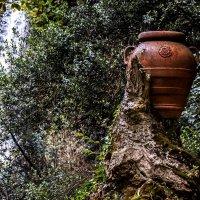 clay jug :: Dmitry Ozersky