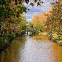 Осень :: Виктор Калабухов