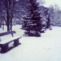 Зимний парк :: Даша Шумакова