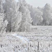 Марина Махова - Siberian winter