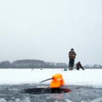 На Рузском водохранилище :: Евгений Мергалиев