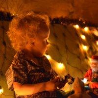 Новогоднее настроение :: DaRiA V