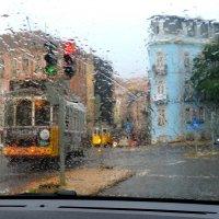 3хдневный дождь ... :: Анастасия Власова