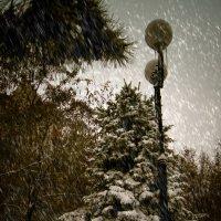 Зимнии зарисовки :: Сергей Шруба