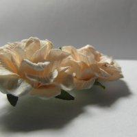 White Flower :: Настя Шахова