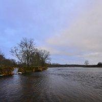 Декабрь...река Луга.. :: Олег .