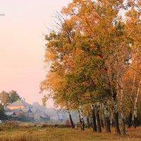 Осенний закат. :: Валентина Домашкина