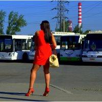 Девушки бывают разные.. :: Лариса Красноперова