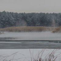Легкая дымка над речкой :: Павел Яновский