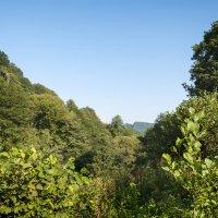 непролазные джунгли гор :: Андрей ЕВСЕЕВ