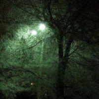 ночные краски :: МИХАИЛ КАТАРЖИН
