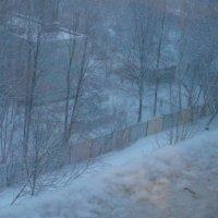 Вид из окна :: Настя Шахова