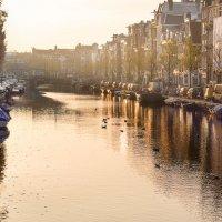 I Love Amsterdam :: Archi