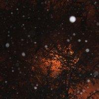 снег :: нестор сидоров